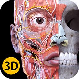 ANATOMY 3D ATLAS - Anatomy 3D Atlas - Human Anatomy Apps